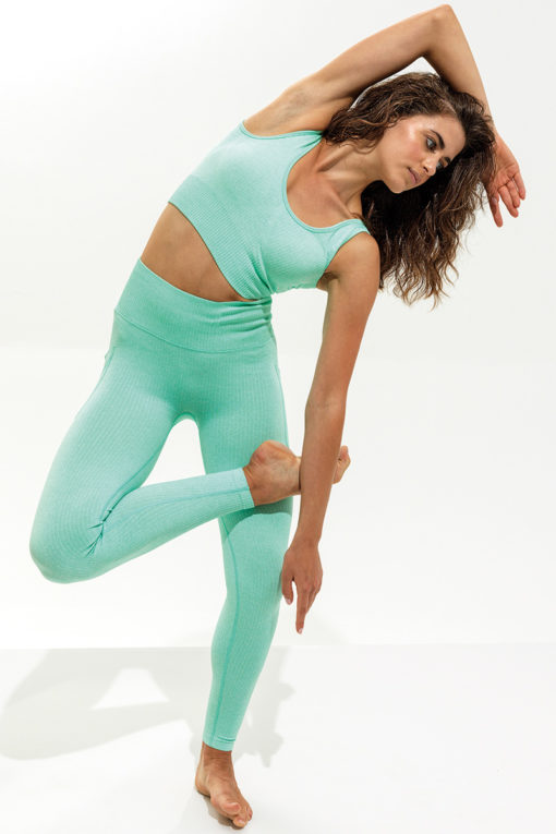 Women's Ribbed Seamless 3D Fit Peppermint Sports Leggings