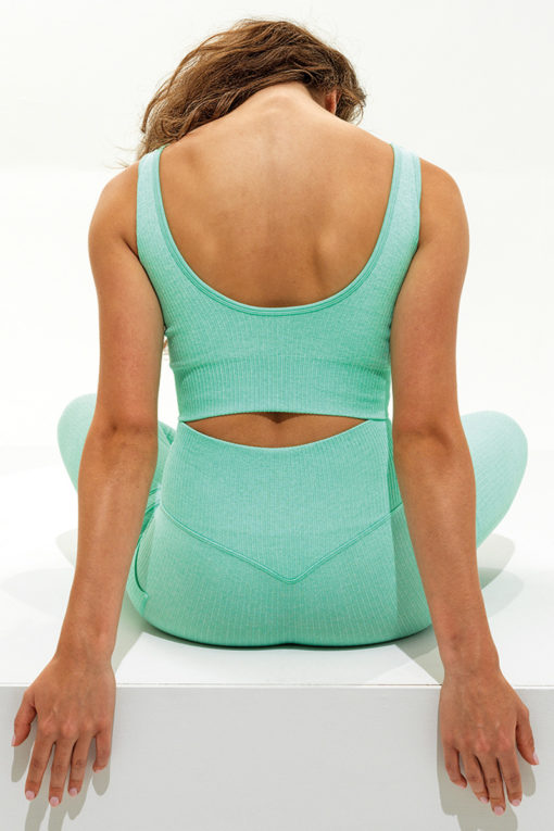 Womens Ribbed Seamless 3D Fit Peppermint Sports Leggings Back