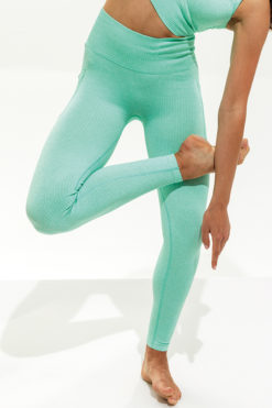 Womens Ribbed Seamless 3D Peppermint Sports Leggings