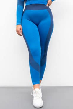 Women's Seamless Panelled Bright Blue Navy Leggings Front