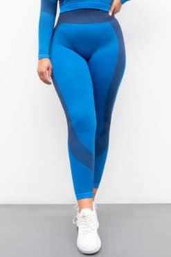 Women's Seamless Panelled Bright Blue Navy Leggings Front