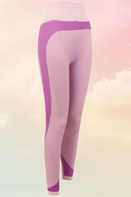 Womens Seamless Panelled Light Pink Purple Leggings